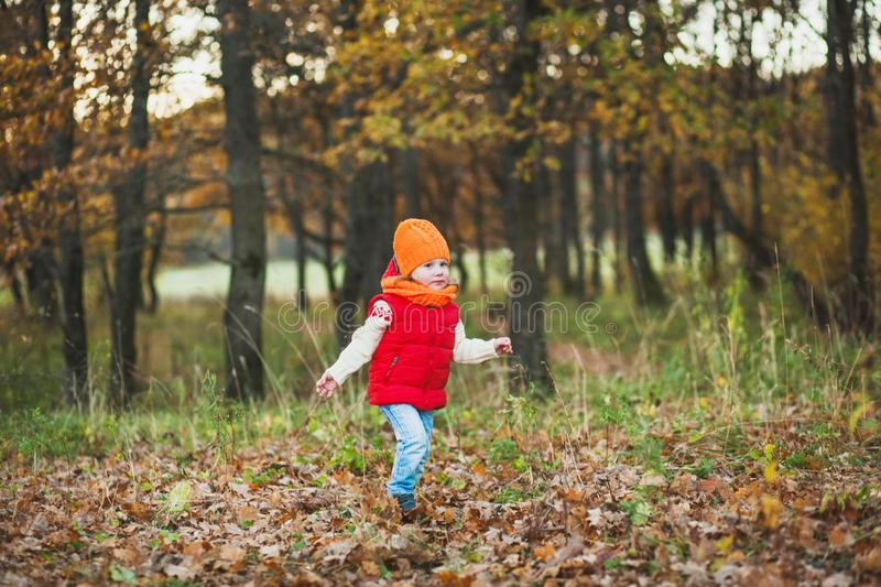 A child on a walk in the autumn park royalty free stock photo