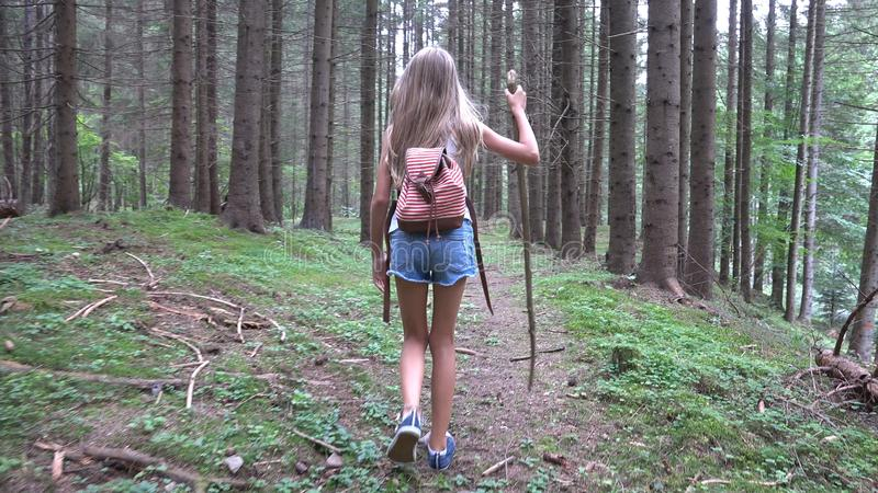 Child Walking in Forest, Kid Outdoor Nature, Girl Playing in Camping Adventure royalty free stock images