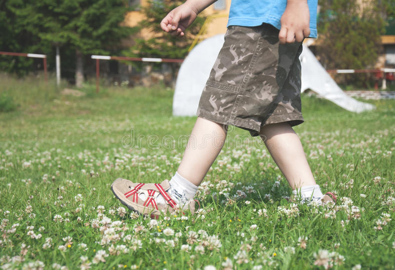 Child walking on the meadow. With flowers royalty free stock photo