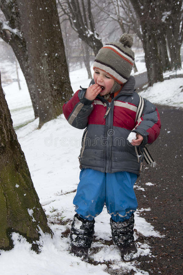 Download Child in winter park stock photo. Image of flakes, play - 25084092