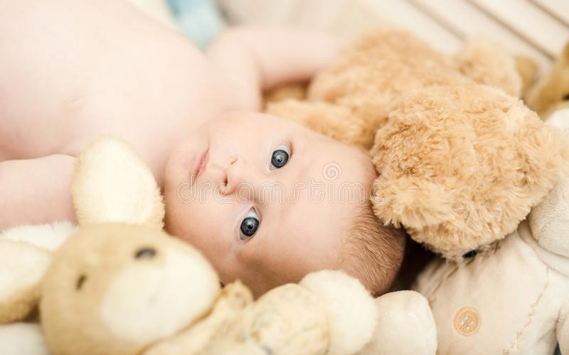 Childhood and innocence concept. Baby lying in crib. Baby boy with his stuffed toys, close up. Newborn toddler with blue eyes and open face surrounded with royalty free stock images