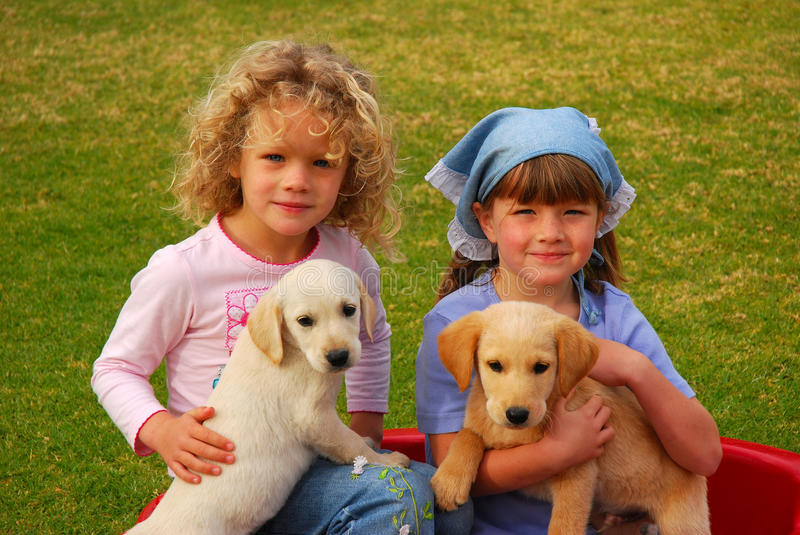 Children with animals. Two beautiful little caucasian girls sitting in the backyard outdoors and holding their two cute Labrador Retriever dog puppies