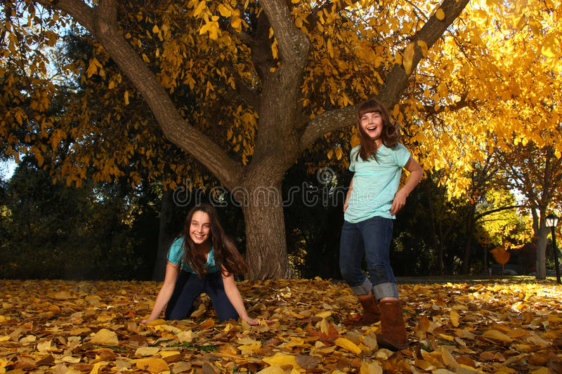 Children in an Autumn Forest in the Fall royalty free stock images