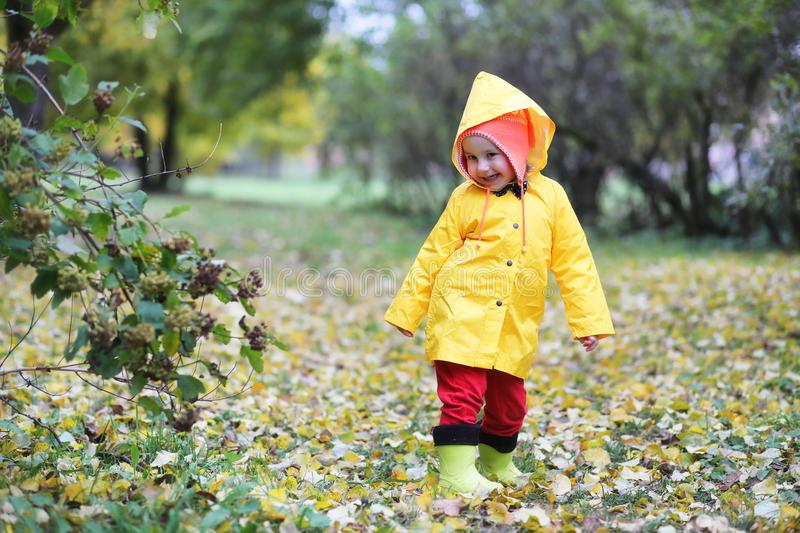 Children in the autumn park walk royalty free stock image