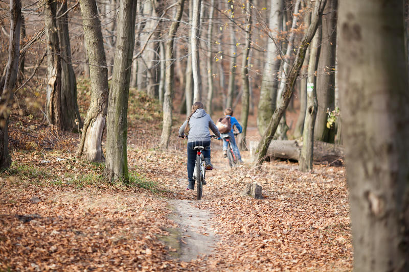 Children on bicycles in autumn forest royalty free stock photos