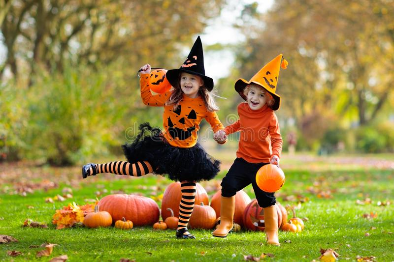 Kids with pumpkins in Halloween costumes. Children in black and orange witch costume and hat play with pumpkin and spider in autumn park on Halloween. Kids trick stock photo