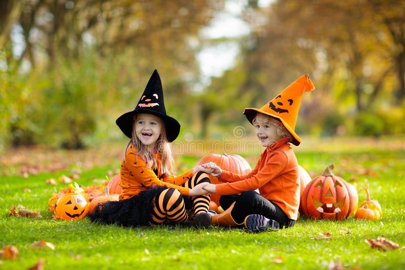 Kids with pumpkins in Halloween costumes. Children in black and orange witch costume and hat play with pumpkin and spider in autumn park on Halloween. Kids trick royalty free stock photo