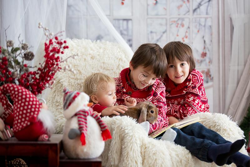 Children, boy brothers, and pet rabbit, reading book sitting in cozy armchair on a snowy winter day royalty free stock image