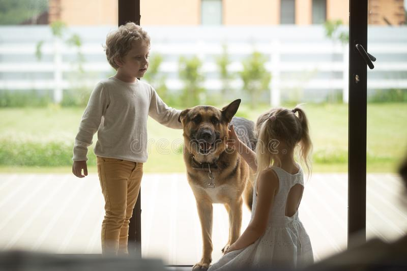Children boy and girl playing with dog coming inside house. Children boy and girl playing with big dog coming inside house, kids siblings caressing german royalty free stock images