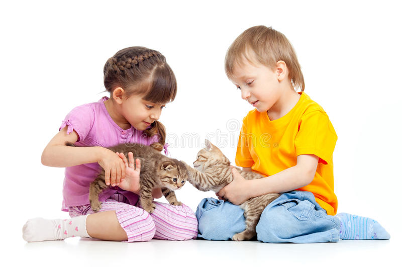Children boy and girl playing with cat. Children boy and girl playing with kittens on white background royalty free stock photos