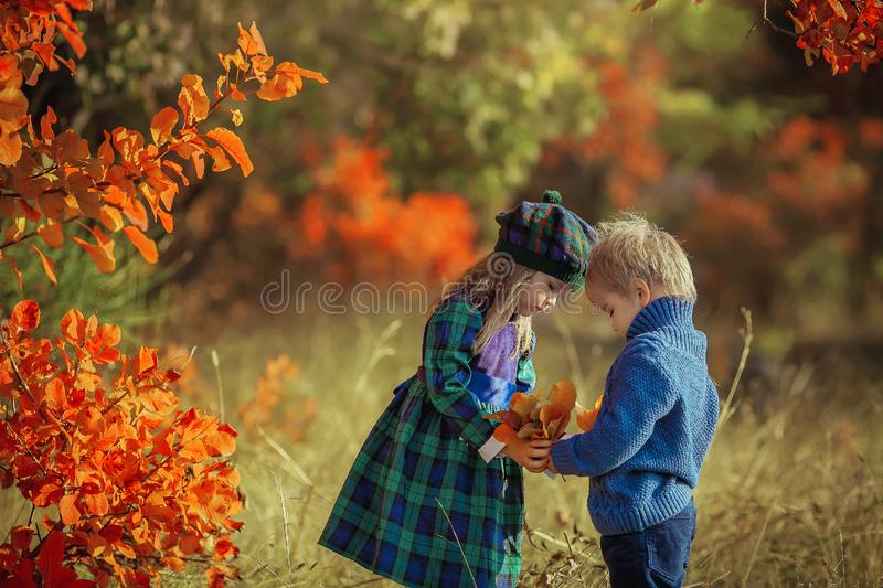 Children brother and sister walk in the autumn yellow forest dressed in French Provence style royalty free stock photos
