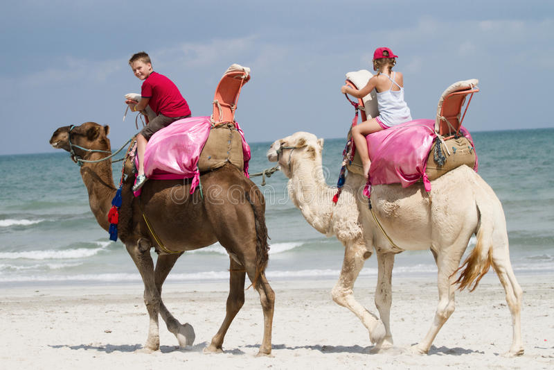Download Children on camels stock image. Image of eastern, africa - 21510195
