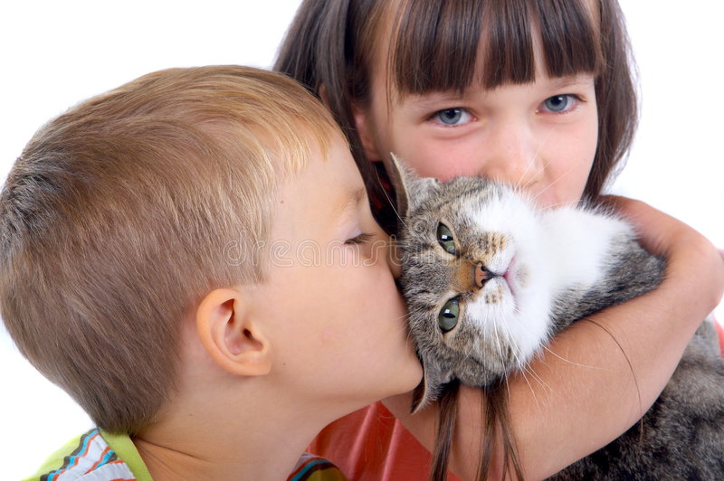 Children and cat stock photo