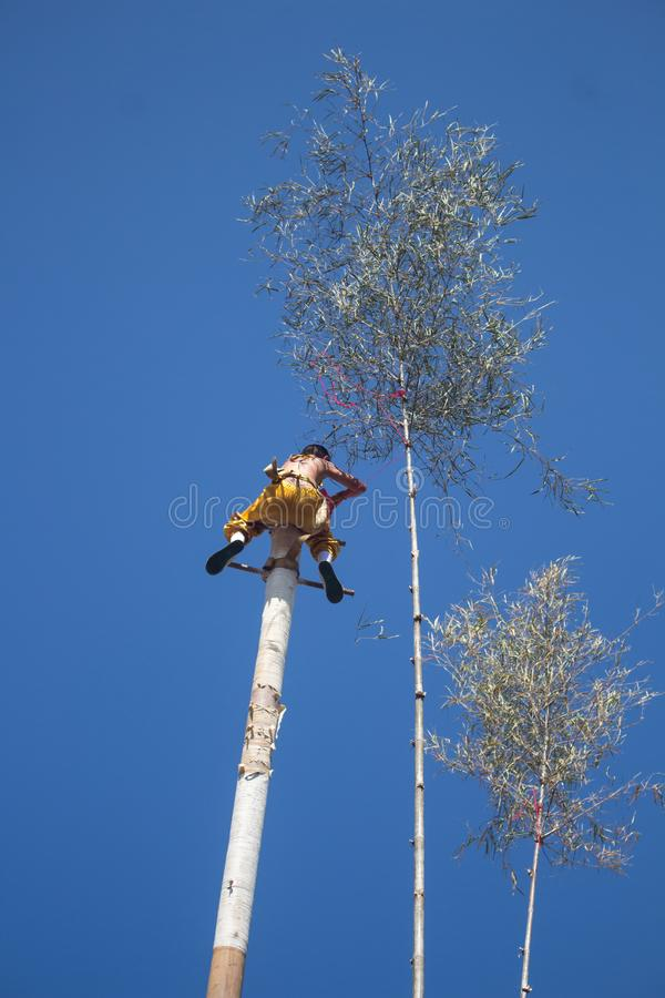 A children climbing pole wood to do play stock photos