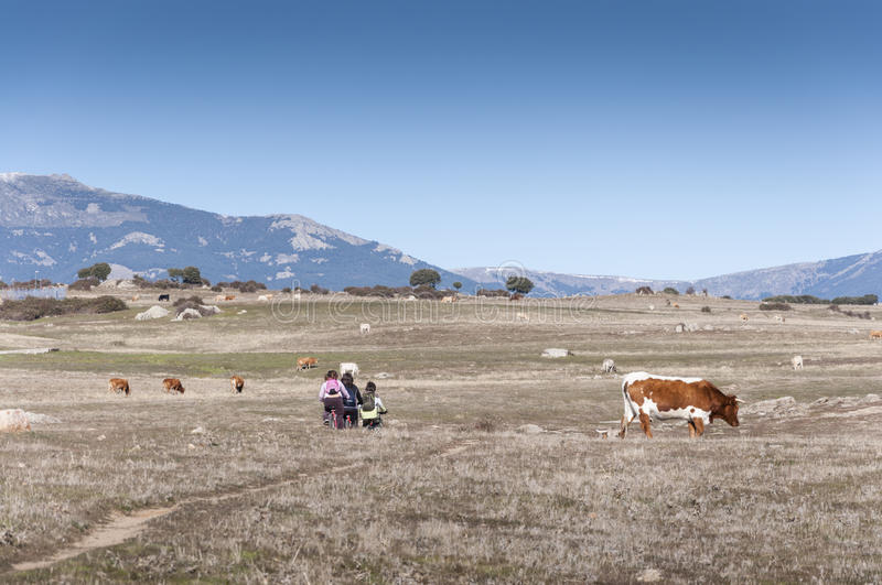 Children cycling in nature. Photo taken in Dehesa de Navalvillar, Colmenar Viejo, Madrid, Spain. At the background, Guadarrama Mountains stock images