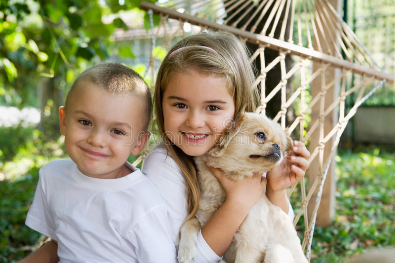 Children and the dog. Preschool children playing with cute dog royalty free stock image