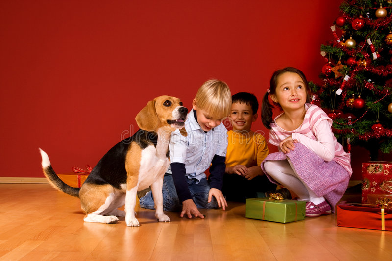 Children and dog sitting by Christmas tree royalty free stock image