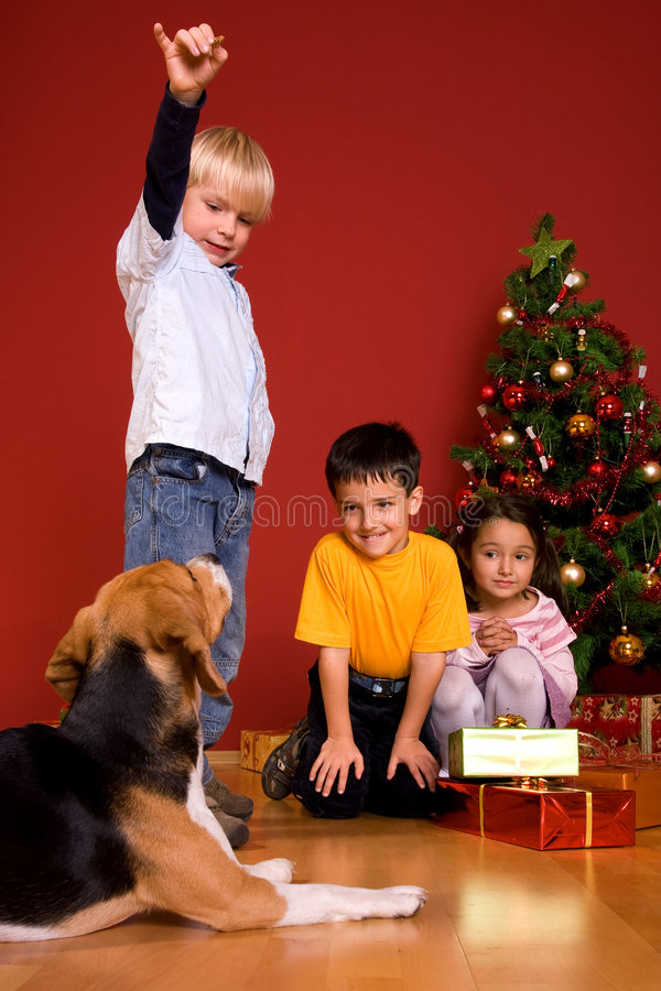 Download Children And Dog Sitting By Christmas Tree Royalty Free Stock Image - Image: 7064896