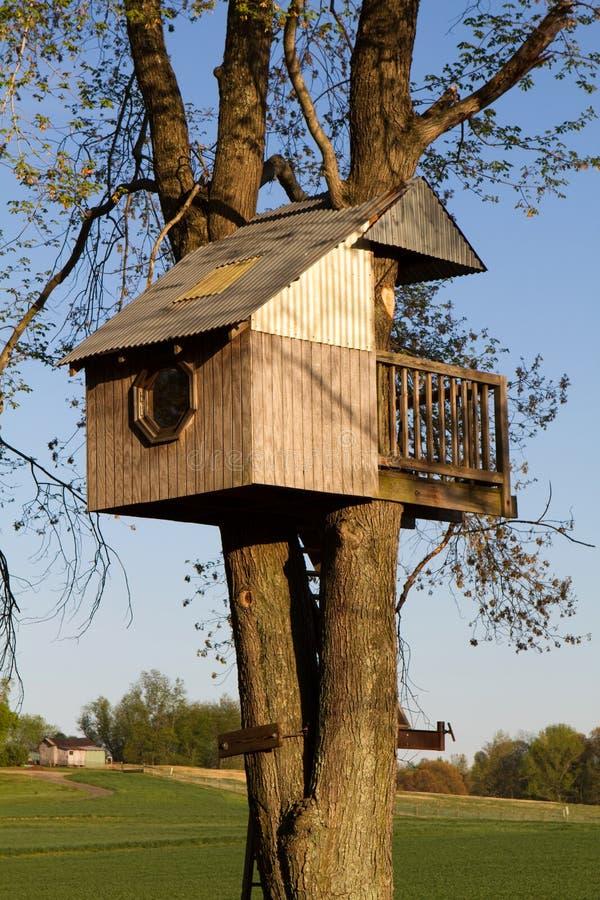 children domek na drzewie obrazy stock