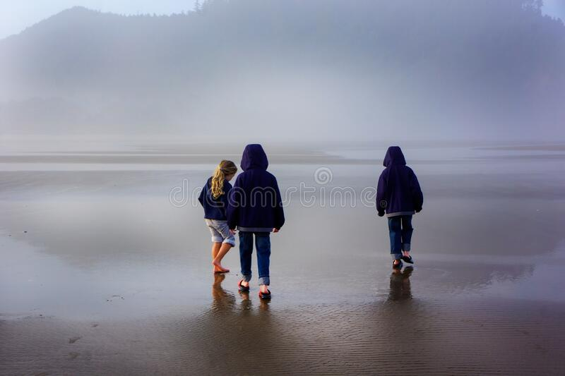 Children Explore Foggy Beach on Wet Sand royalty free stock images