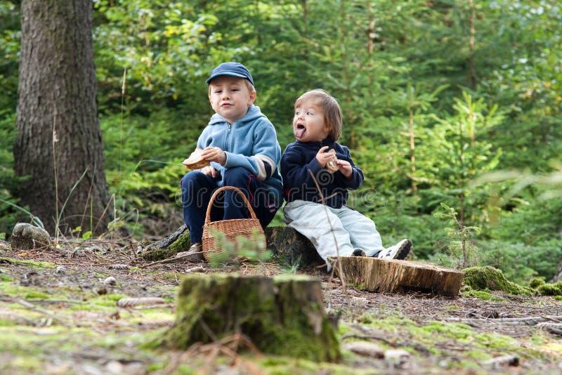 Download Children eating picnic stock image. Image of children - 11164967