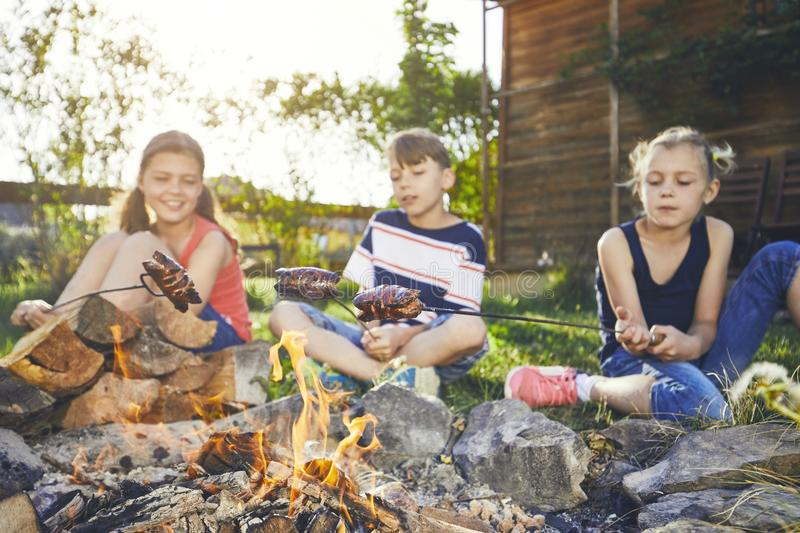 Children enjoy campfire. Siblings family toasting sausages on the garden at sunset stock photos