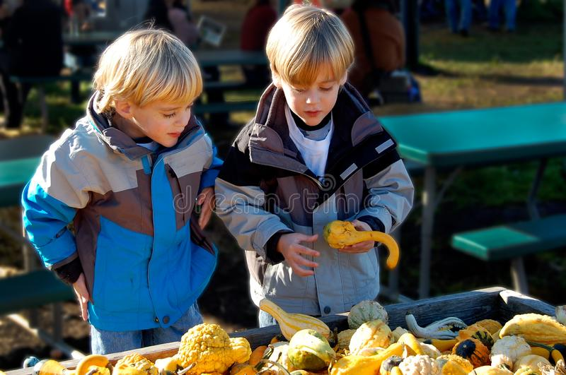 Children at Farmers Market Selecting Vegetables. Fall is time to decorate the table with gourds, squash and pumpkins. Children are helping to select the perfect royalty free stock photography
