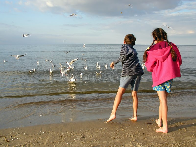 Children Feeding Gulls stock photo