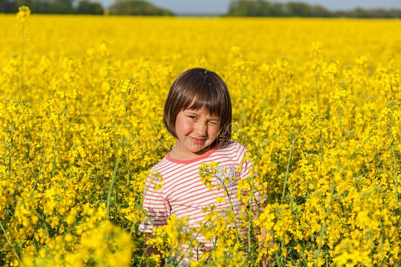 Download Children In The Field With The Flowering Stock Photo - Image: 93862172