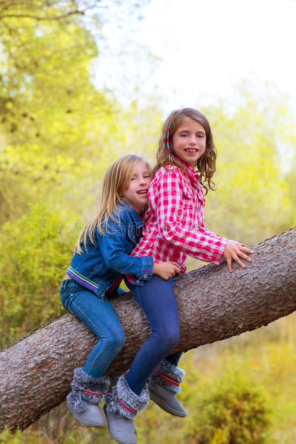 Children friends girls climbing to a pine tree stock images