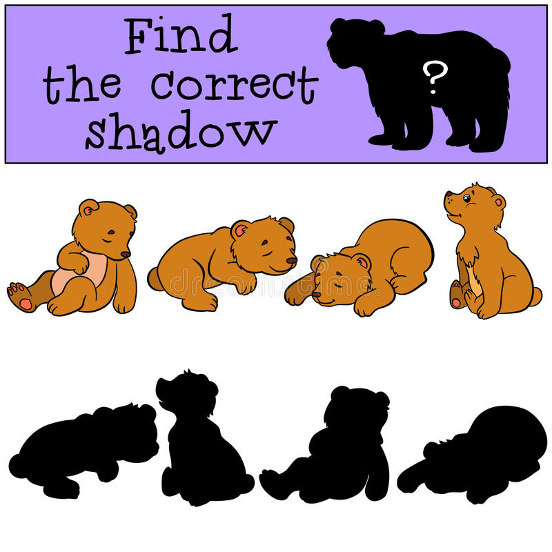 Children games: Find the correct shadow. Little cute baby bears. vector illustration