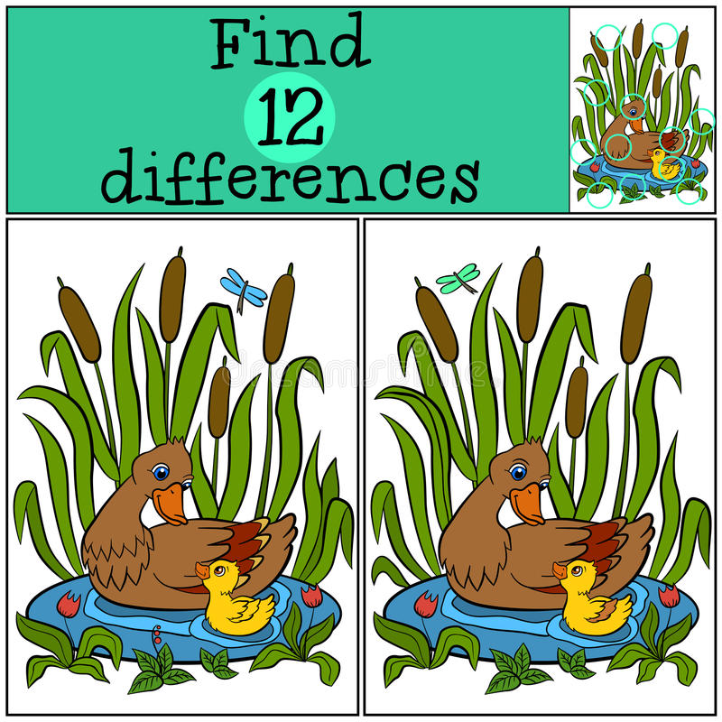 Free Children Games: Find Differences. Mother Duck Swims On The Pond With Her Little Cute Duckling. Royalty Free Stock Image - 71211566