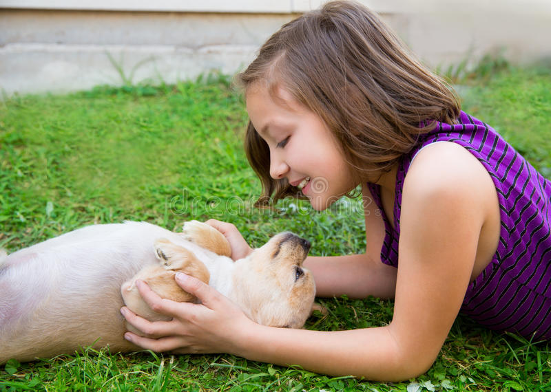 Children girl playing with chihuahua dog lying on lawn stock photos