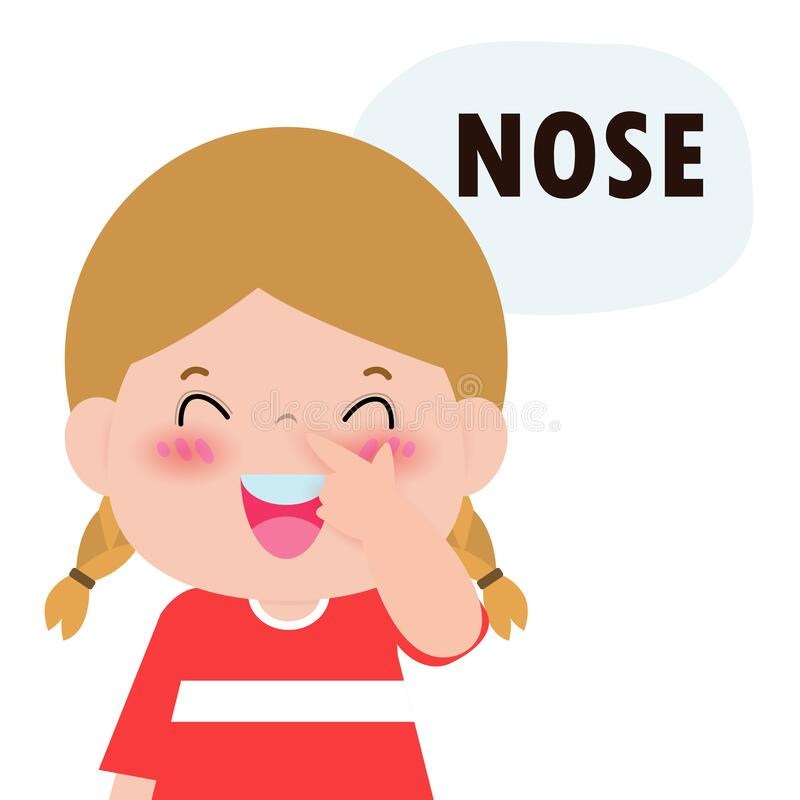 Free Children Girl Pointing To And Saying `nose` As Part Of Naming Body Or Face Parts Series For Kid Isolated Vector Illustration. Stock Photo - 169900130