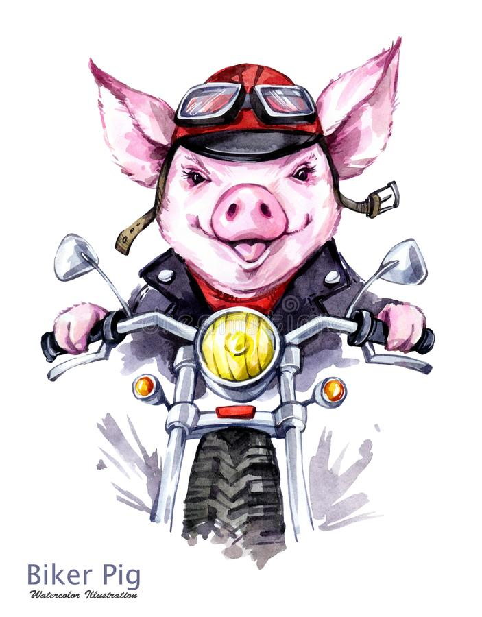 Children illustration. Watercolor grange pig in jacket on motorbike. Funny biker. Transport. Symbol of 2019 year. Perfect for T-shirts, posters, invitations royalty free illustration
