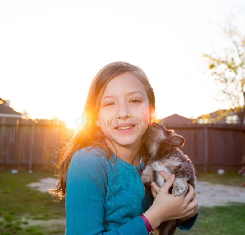 Children kid girl playing with puppy dog chihuahua. Children kid girl playing with puppy dog hairy chihuahua in backyard sunset stock photography