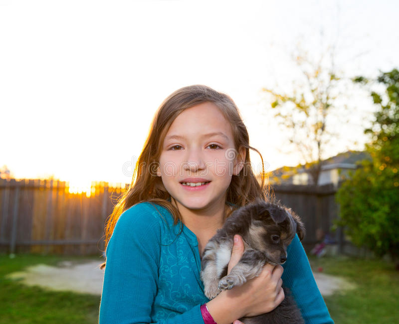 Children kid girl playing with puppy dog chihuahua. Children kid girl playing with puppy dog hairy chihuahua in backyard sunset royalty free stock photo
