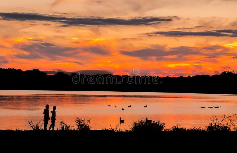 Children at lake during sunset watching ducks royalty free stock images