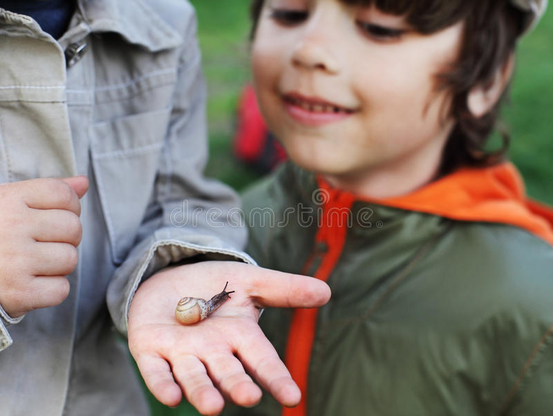 Children learn snail stock photography