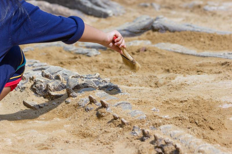 Children learning about, Excavating dinosaur fossils simulation. In the park stock photography