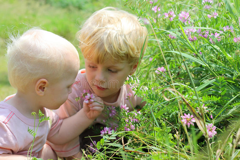 Children Looking at Wildflowers stock images