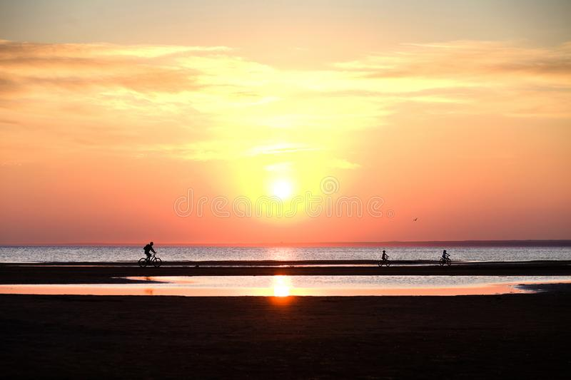 Children and a man riding a bike on the beach at sunset royalty free stock photos