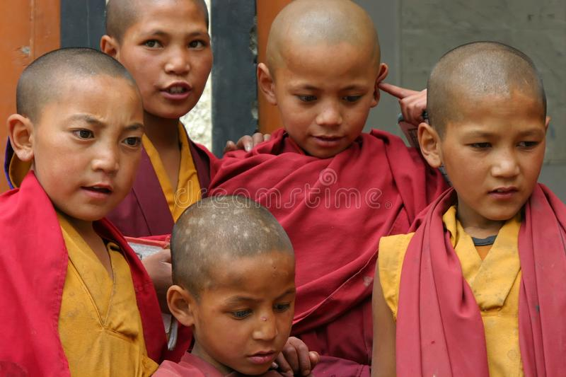 Download CHILDREN IN MONASTERY OF LADAKH Editorial Image - Image: 12255825