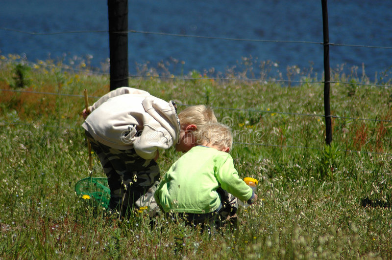 Children In Nature Stock Image