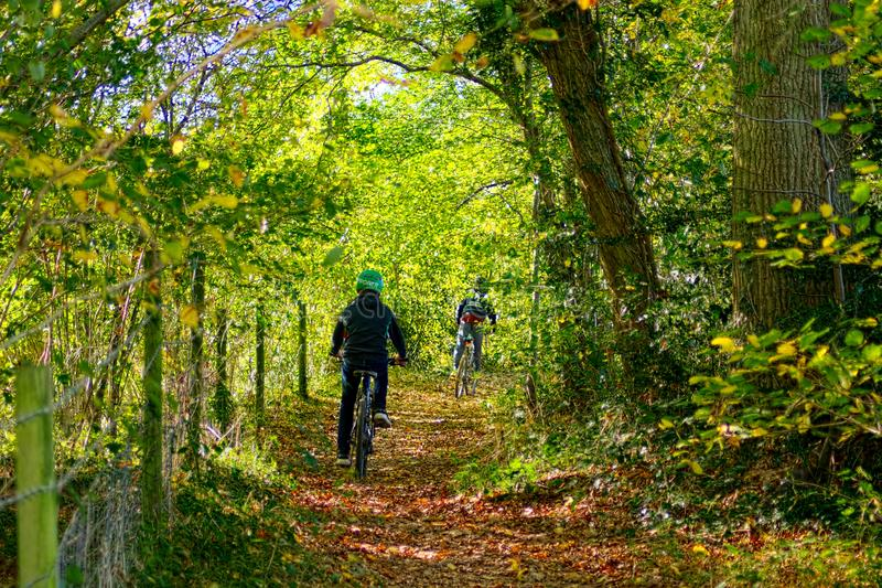 Children Biking in the forest. Children off road cycling through the woods at autumn time stock images