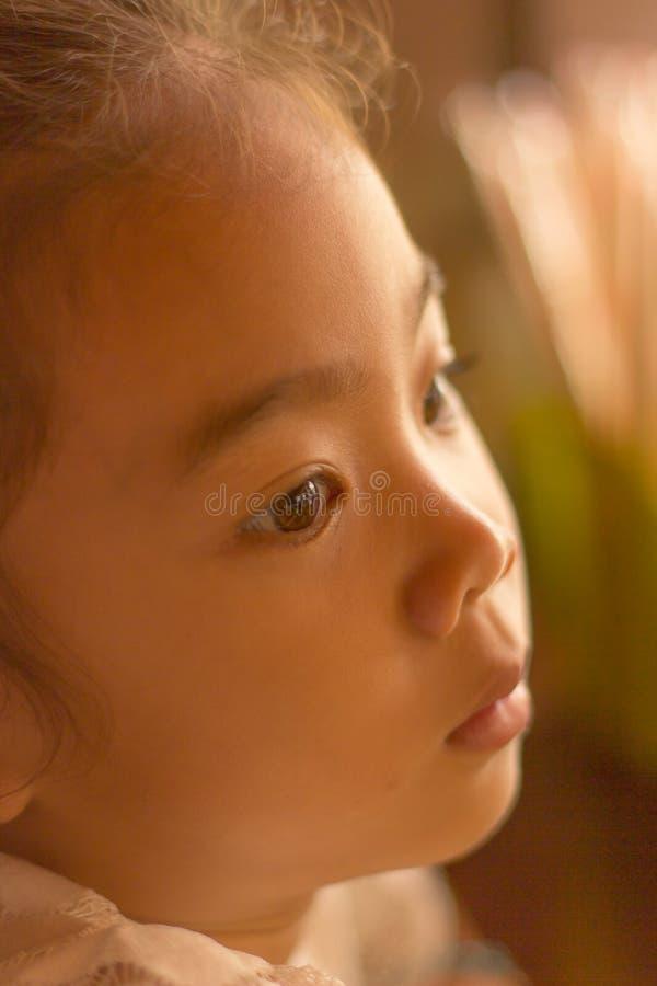 Children& x27; ojos de s que miran hacia fuera por mañana fotografía de archivo libre de regalías