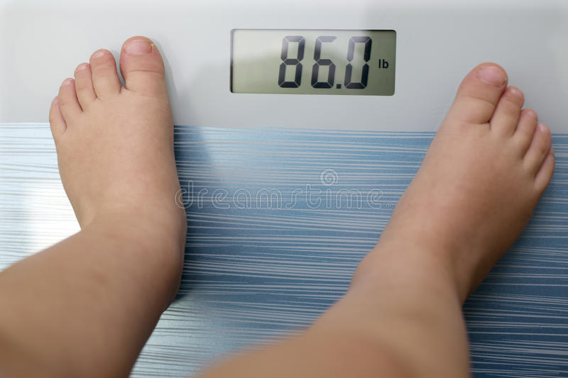 Children overweight royalty free stock photography