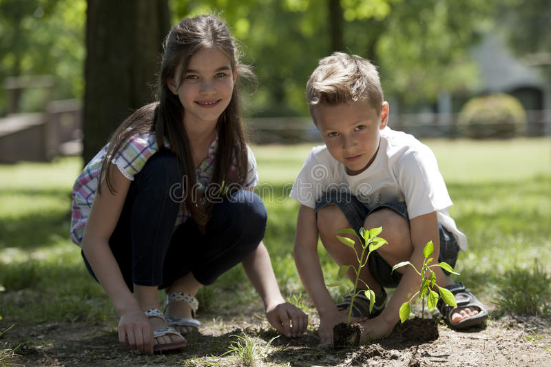 Children planting stock photography