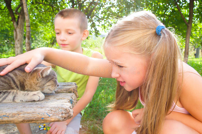 Children play with cat stock images