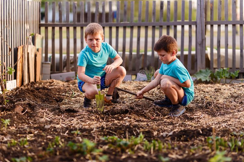 Children play with the ground in the garden. In summer stock image